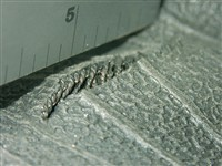 8) A sidewall defect as seen from the inside of the tire.